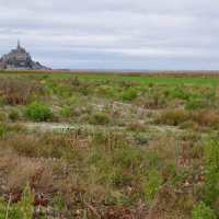 Mont Saint-Michel: The Big Flood